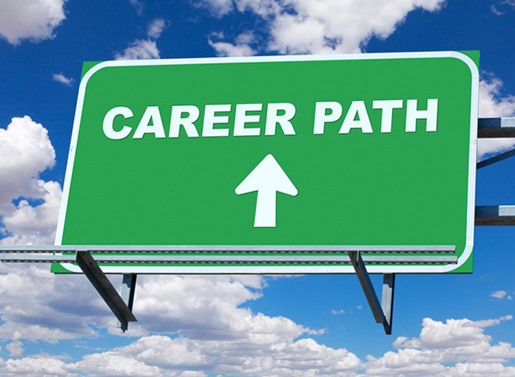 Career Counselor Limitations for Planning a Career Change